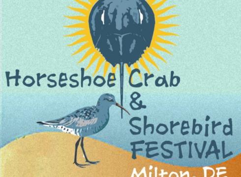 2021 Horseshoe Crab & Shorebird Festival