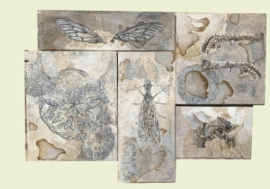 Micro / Macro- Works by Caitlin Gill