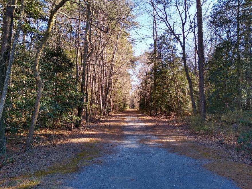 Trap Pond State Park
