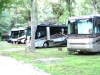 Holly Lake Campsites