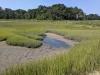 James Farm Ecological Preserve