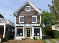 Cape Artists Gallery