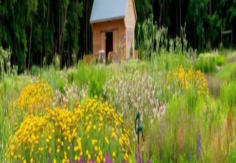 Delaware Botanic Gardens to open in September, 2019