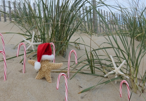 Holiday Happenings in Southern Delaware!